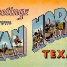 Greetings from Van Horn Texas TX, Large Letter Linen Postcard - 2342