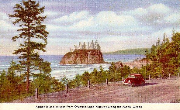 Abbey Island From the Olympic Loop Highway in Washington WA Vintage Postcard - 2367