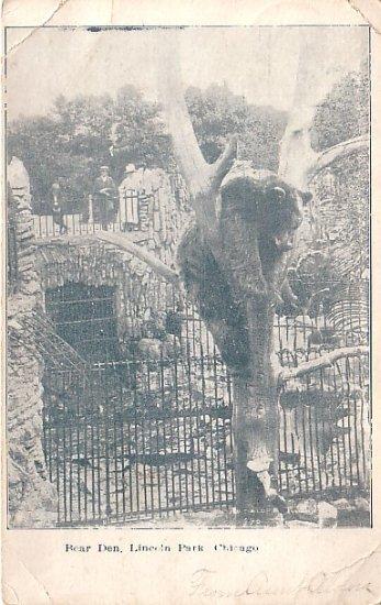 Bear Den at Lincoln Park Chicago Illinois IL Vintage Postcard - 2476