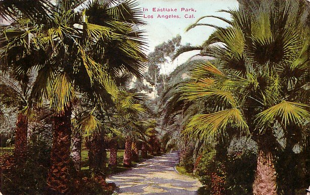 Eastlake Park in Los Angeles California CA, 1911 Vintage Postcard - 2666