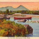 Lily Pad Pond at Sourdnahunk Valley in Maine ME, 1935 Curt Teich Postcard - 2818