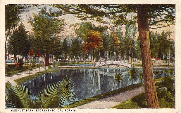 McKinley Park in Sacramento California CA, Vintage Curt Teich  Postcard - 3018