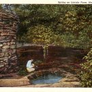 Spring on Lincoln Farm at Hodgenville Kentucky KY, Curt Teich Linen Postcard - 3033