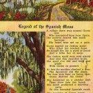 Legend of the Spanish Moss, 1950 Curt Teich Linen Postcard - 3036