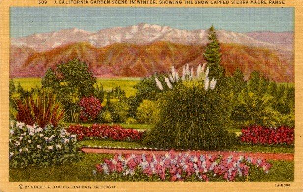 Garden Scene with Sierra Madre Range in Background, California CA 1931 Curt Teich Postcard - 3054