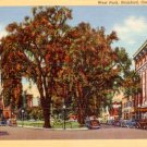 West Park in Stamford Connecticut CT, 1940 Curt Teich Linen Postcard - 3101
