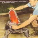 Alligators at Casper's Gator Jungle in St Augustine Florida FL, Linen Postcard - 3142