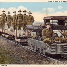 U.S. Army Supply Train WWI, Curt Teich Vintage Postcard - 3196