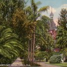 The Grounds at Tampa Bay Hotel in Florida FL, 1915 Curt Teich Vintage Postcard - 3224