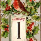 Robin Wishing A Happy New Year, Raphael Tuck & Sons Vintage Postcard - 3283