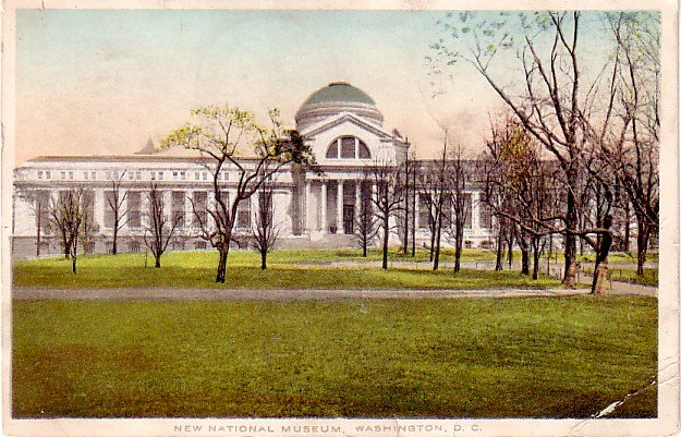 National Museum in Washington DC, 1914 Vintage Postcard - 3304