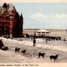 A Dog Team in Quebec Canada, Vintage Postcard - 3369