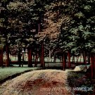 Union Park at Des Moines Iowa IA, 1914 Vintage Postcard - 3385