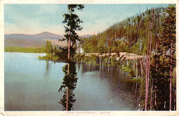 Lake Chatcolet at Idaho ID, Vintage Postcard - 3393