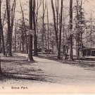 Grove Park at Elmira New York NY, PCK Vintage Postcard - 3425