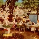Birthday Party at Sugar Plum Tree Children's Fairyland at Oakland California CA, Postcard - 3438