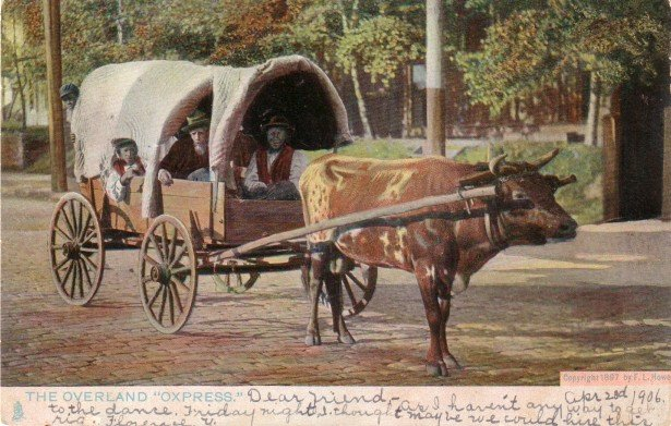 The Overland Oxpress, Raphael Tuck & Sons' 1906 Vintage Postcard - 3457