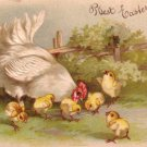 Hen with Chicks, Embossed 1909 Easter Greeting Vintage Postcard - 3469