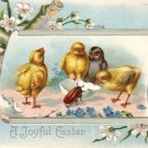 Chicks Examining Beetle, 1909 Embossed Easter Vintage Postcard - 3475