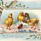 Chicks Examining Beetle, 1909 Embossed Easter Vintage Postcard - 3475