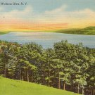 Seneca Lake at Watkins Glen New York NY, Mid Century Linen Postcard - 3525