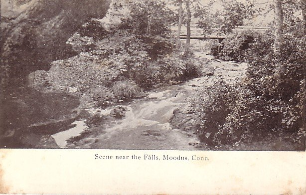 Scene near the Falls at Moodus Connecticut CT, Vintage Postcard - 3647