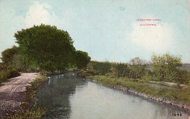 Irrigation Canal in California CA, Vintage Postcard - 3729