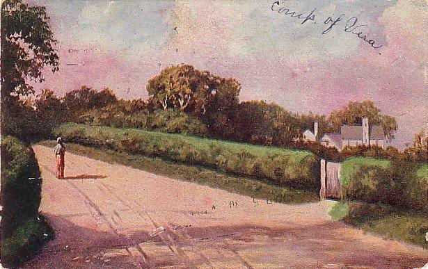 Country Road Landscape Scene 1907 Vintage Postcard - 3743
