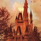 Cinderella Castle at Walt Disney World in Florida, Chrome Postcard - 3822