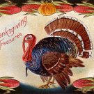 E. Nash 1910 Thanksgiving Turkey, Holiday Vintage Postcard - 3861