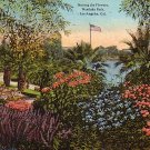 Among the Flowers in Westlake Park, Los Angeles California CA Vintage 1921 Postcard - 4006