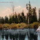 On The Willamette River in Oregon OR, Edward H Mitchell 1909 Vintage Postcard - M0012