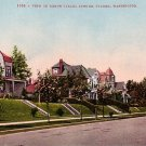 North Yakima Avenue in Tacoma Washington WA, Edward H Mitchell 1909 Vintage Postcard - M0018