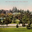 Wright's Park in Tacoma Washington WA, Edward H Mitchell 1909 Vintage Postcard - M0021
