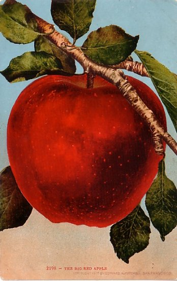 The Big Red Apple, Edward H Mitchell 1910 Vintage Postcard - M0082