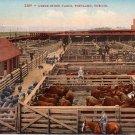 Union Stock Yards in Portland Oregon OR, Edward H Mitchell 1910 Vintage Postcard - M0086