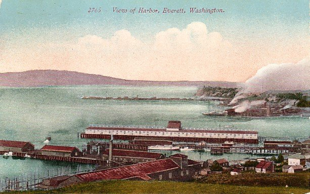 View of Harbor in Everett Washington WA, Edward H Mitchell 1910 Vintage Postcard - M0101