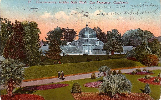 Golden Gate Park in San Francisco, California CA, Edward H Mitchell 1911 Vintage Postcard - M0120