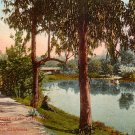 Eastlake Park in Los Angeles, California CA Edward H Mitchell 1911 Vintage Postcard - M0124