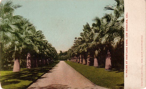Eastlake Park in Los Angeles California CA Edward H Mitchell 1906 Postcard - M0146