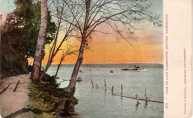 View on Lake Washington in Seattle WA, Edward H Mitchell 1906 Postcard - M0174
