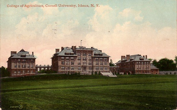 College of Agriculture in Cornell University at Ithaca New York NY 1910 Vintage Postcard - BTS 175