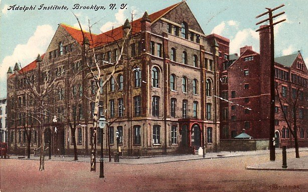 Aldolphi Institute in Brooklyn New York NY, Vintage Postcard - BTS 192