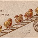 Chicks Walking up Ladder Easter Greetings, 1909 Vintage Postcard - 4072