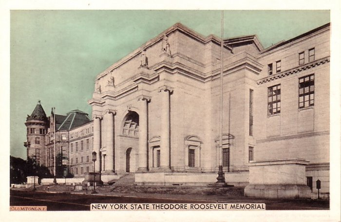 NY State Theodore Roosevelt Memorial Building in New York City, Vintage Postcard - 4109