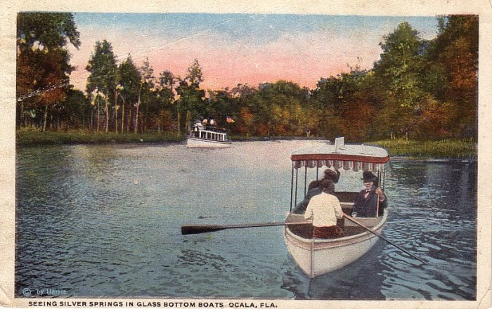 Seeing Silver Springs in Glass Bottom Boats at Ocala Florida FL, 1919 Curt Teich Postcard - 4133