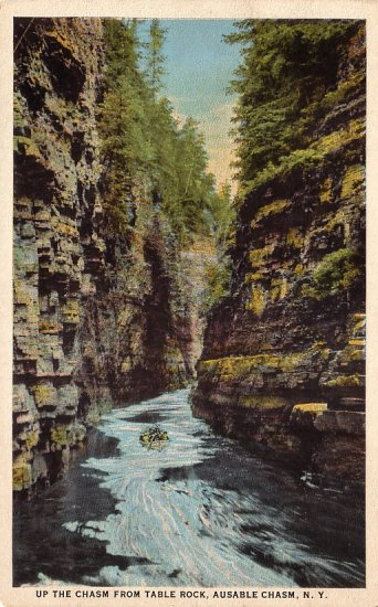 Up the Chasm from Table Rock at Ausable Chasm New York NY, Curt Teich Vintage Postcard - 4151