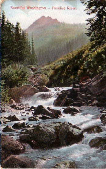 Paradise River in Washington WA, Vintage Postcard - 4167