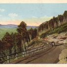 Scene on the Mohawk Trail in Massachusetts MA Vintage Postcard - 4277