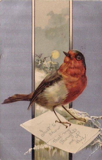 Robin Delivering Special Greetings, 1917 Vintage Postcard - 4342
